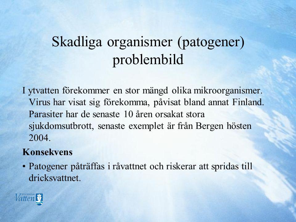 Skadliga organismer (patogener) problembild