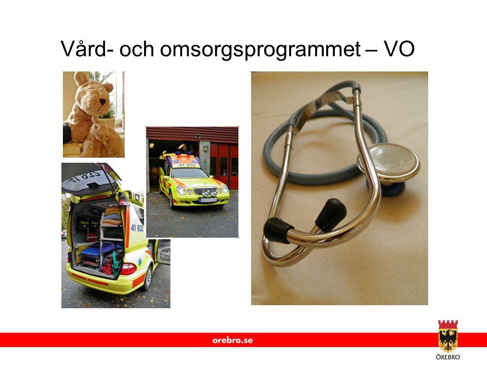 Vård- och omsorgsprogrammet – VO