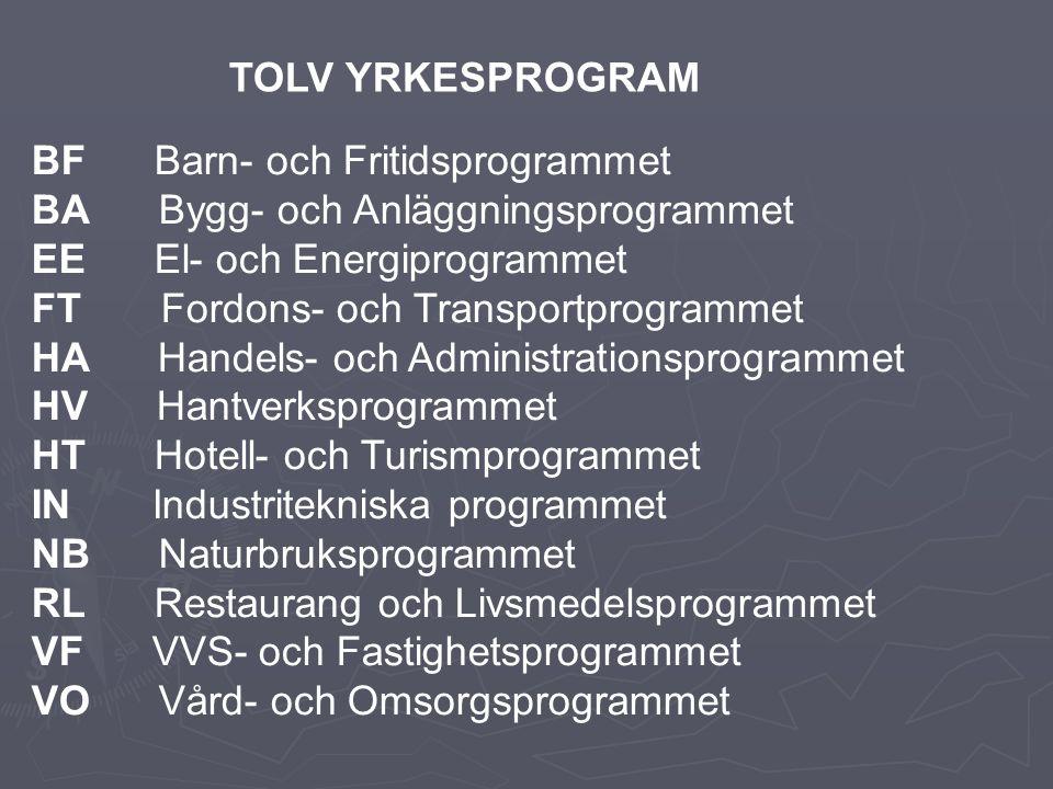 TOLV YRKESPROGRAM BF Barn- och Fritidsprogrammet. BA Bygg- och Anläggningsprogrammet. EE El- och Energiprogrammet.