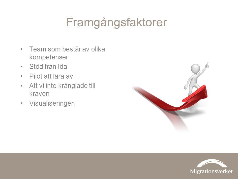 Framgångsfaktorer Team som består av olika kompetenser Stöd från Ida