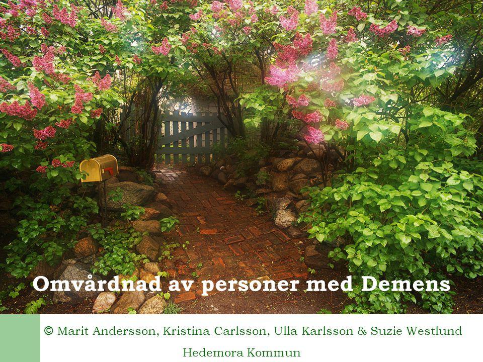 Omvårdnad av personer med Demens