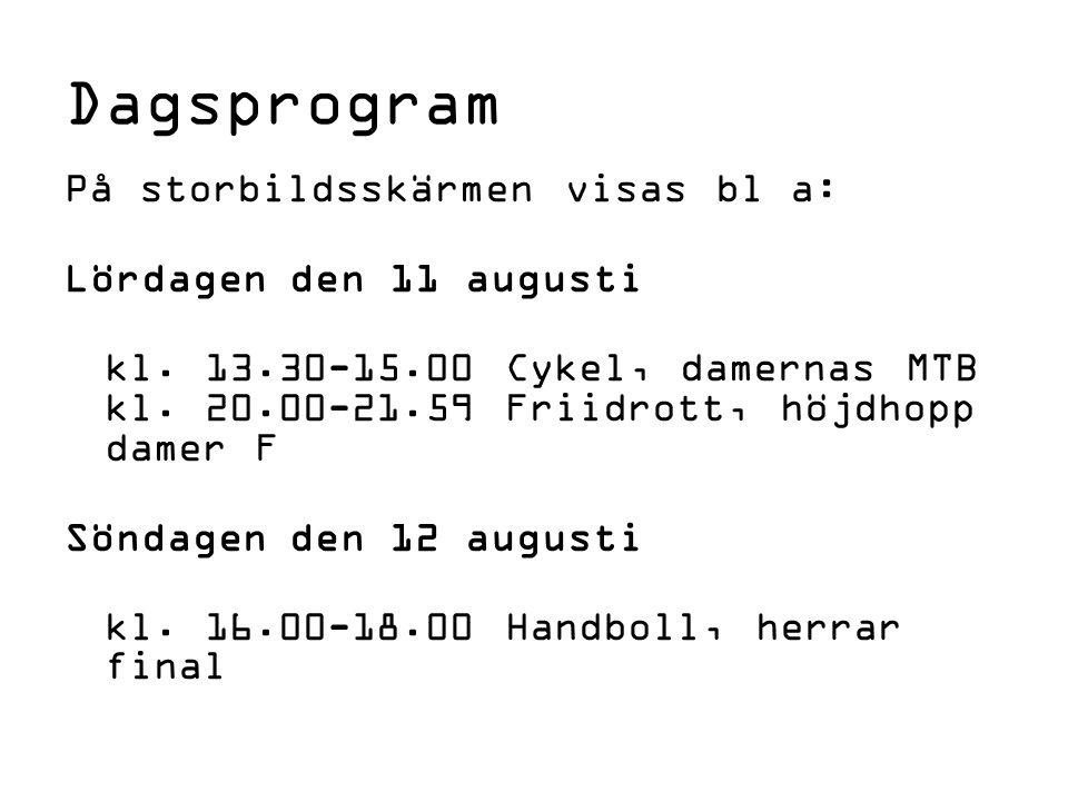Dagsprogram