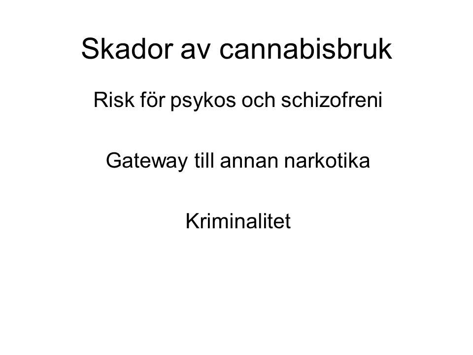 Skador av cannabisbruk