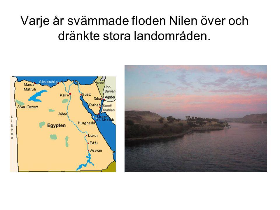 Varje år svämmade floden Nilen över och dränkte stora landområden.