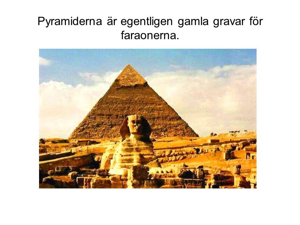 Pyramiderna är egentligen gamla gravar för faraonerna.