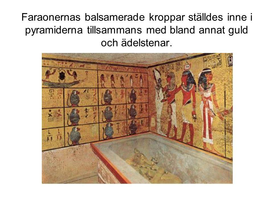 Faraonernas balsamerade kroppar ställdes inne i pyramiderna tillsammans med bland annat guld och ädelstenar.