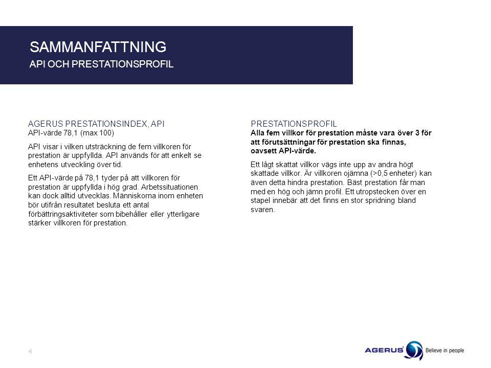 SAMMANFATTNING API OCH PRESTATIONSPROFIL AGERUS PRESTATIONSINDEX, API