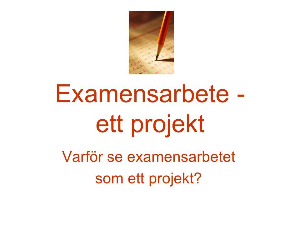 Examensarbete - ett projekt