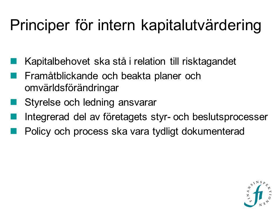 Principer för intern kapitalutvärdering