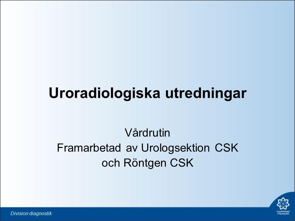 Uroradiologiska utredningar
