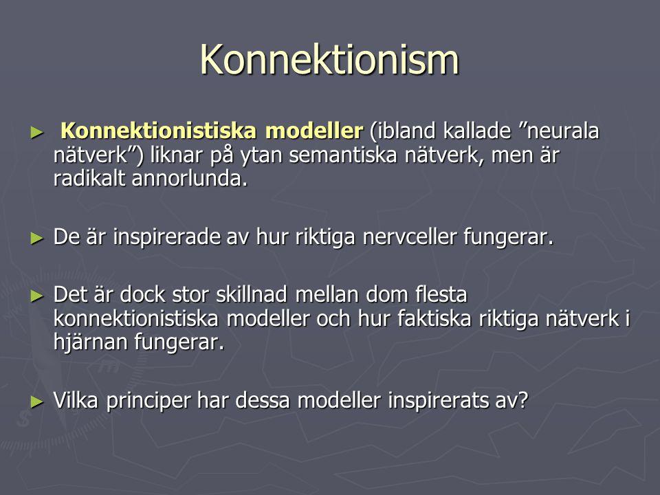 Konnektionism Konnektionistiska modeller (ibland kallade neurala nätverk ) liknar på ytan semantiska nätverk, men är radikalt annorlunda.