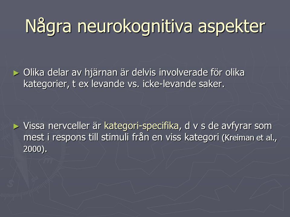 Några neurokognitiva aspekter