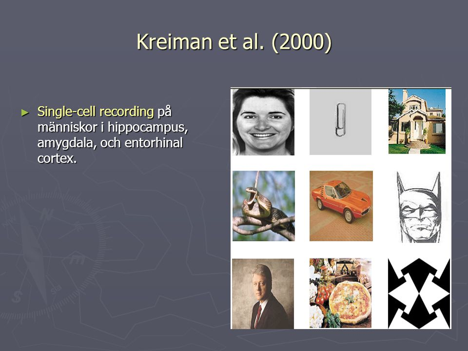 Kreiman et al.