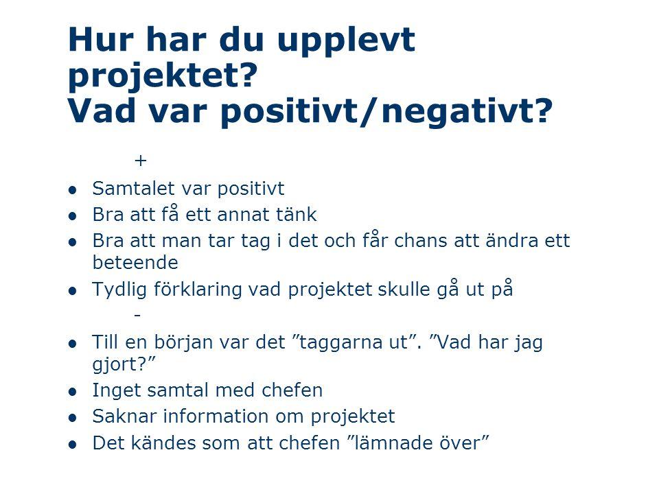 Hur har du upplevt projektet Vad var positivt/negativt