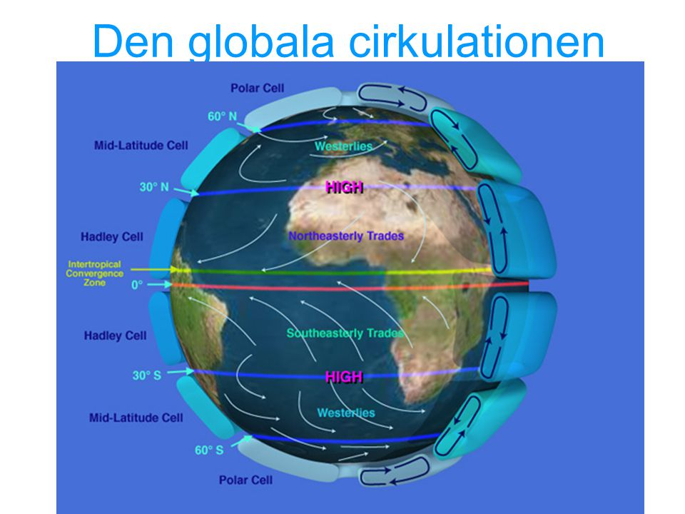 Den globala cirkulationen