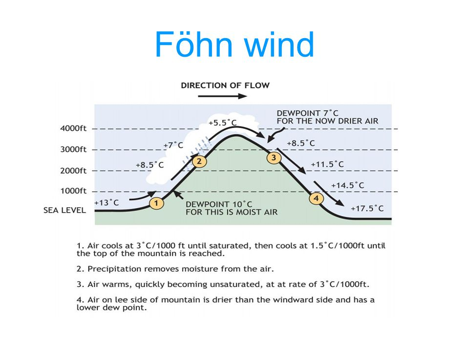 Föhn wind
