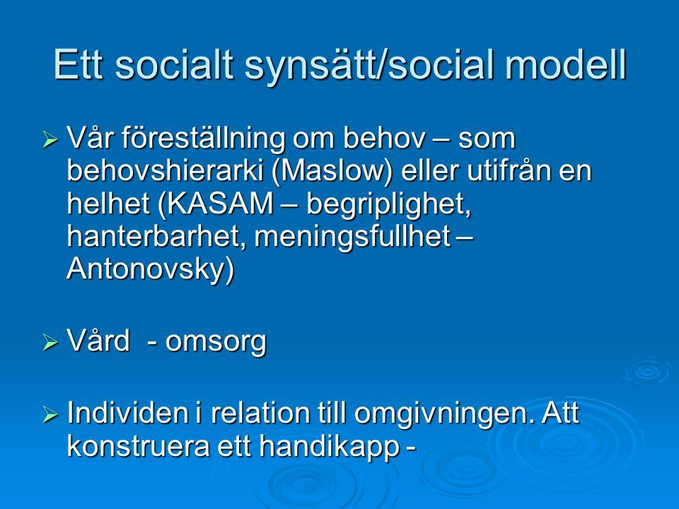 Ett socialt synsätt/social modell