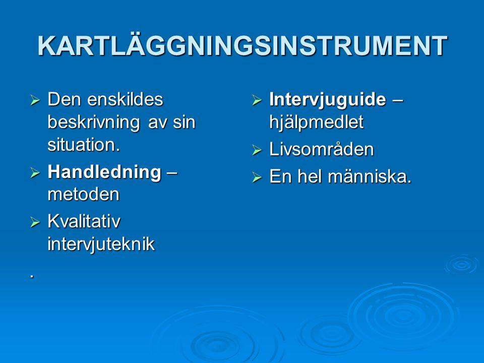 KARTLÄGGNINGSINSTRUMENT