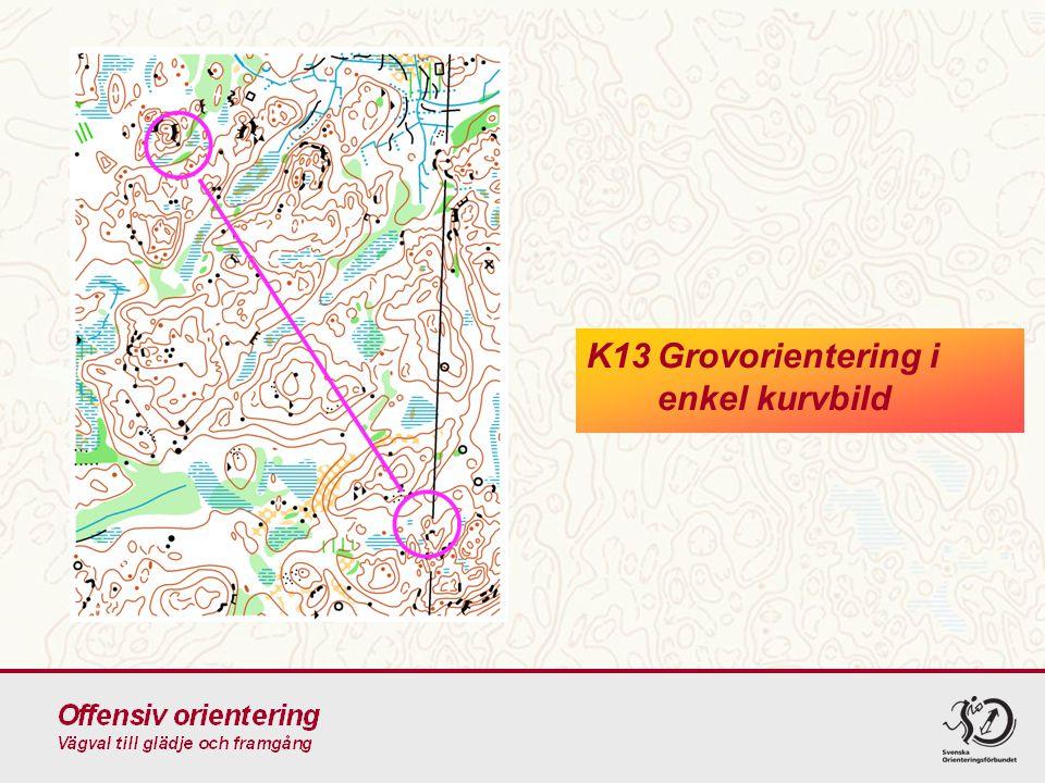 K13 Grovorientering i enkel kurvbild