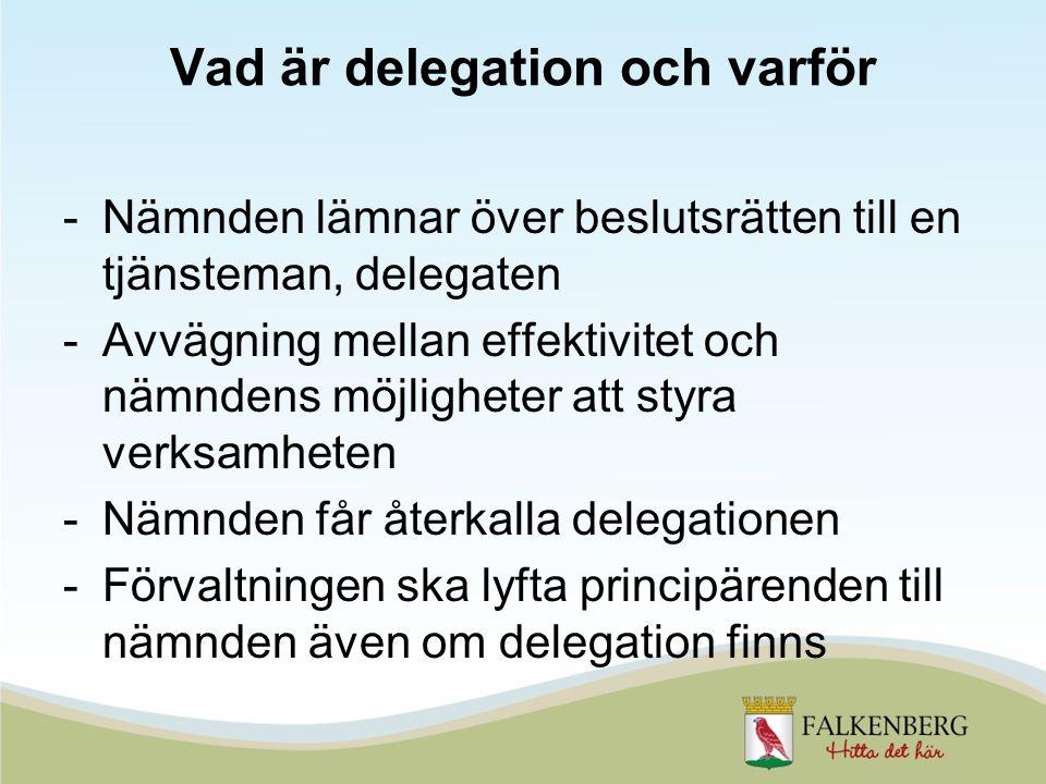 Vad är delegation och varför