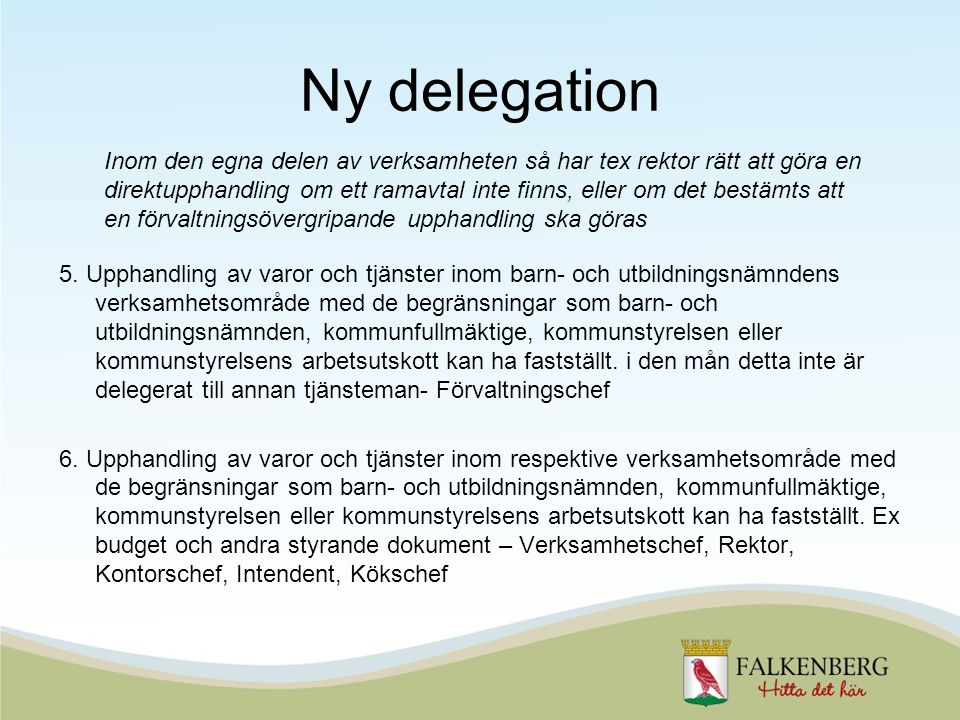 Ny delegation