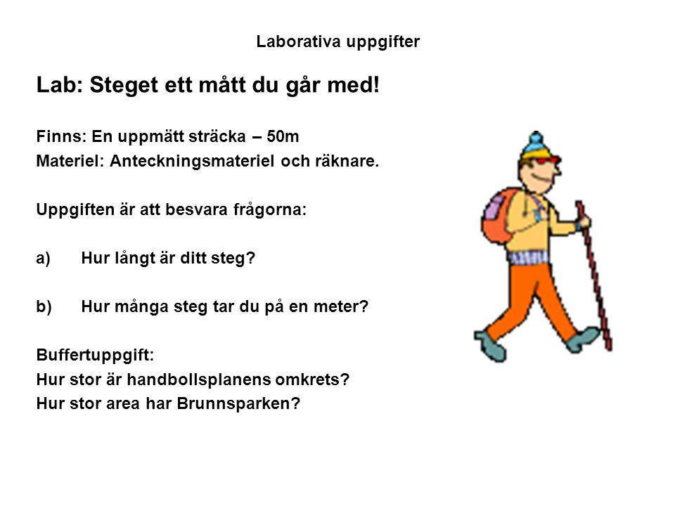 Lab: Steget ett mått du går med!