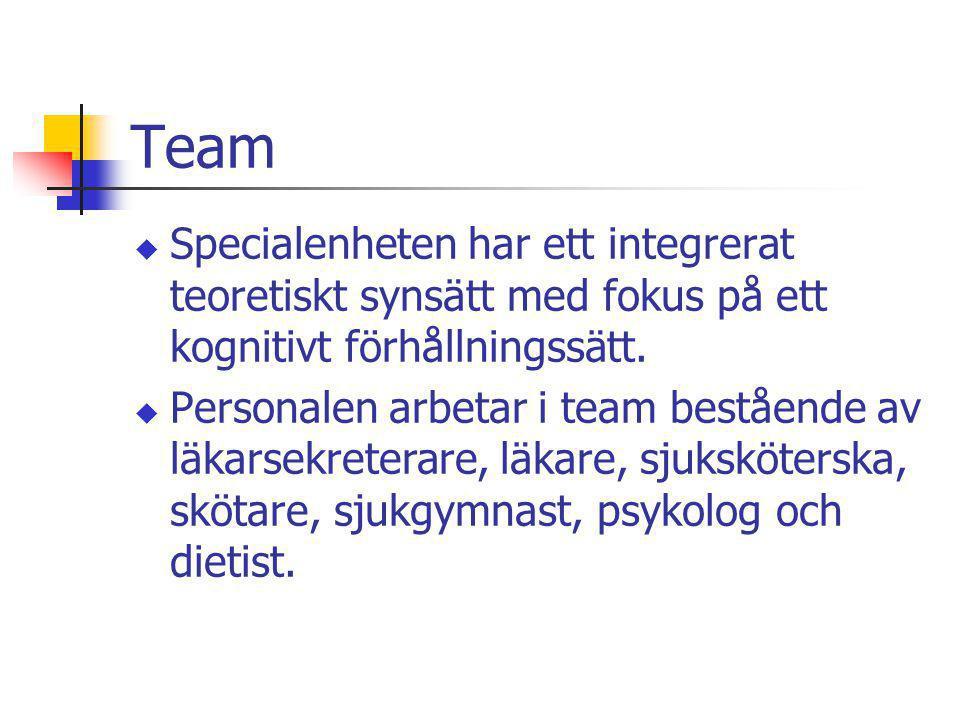 Team Specialenheten har ett integrerat teoretiskt synsätt med fokus på ett kognitivt förhållningssätt.