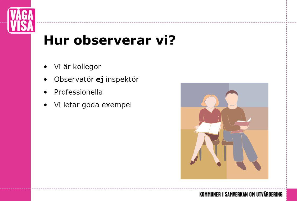 Hur observerar vi Vi är kollegor Observatör ej inspektör