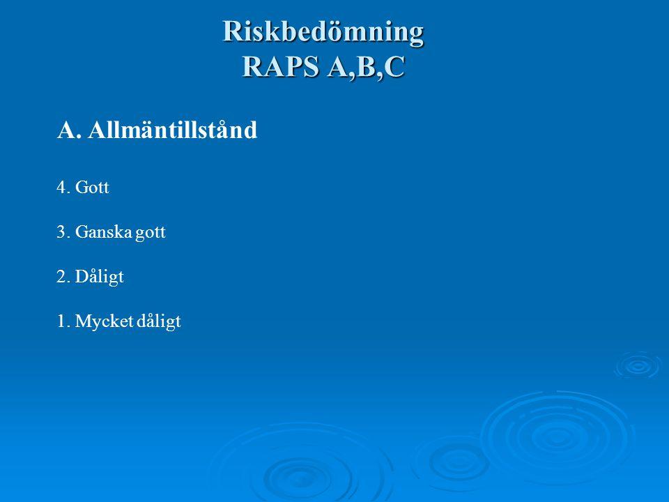Riskbedömning RAPS A,B,C