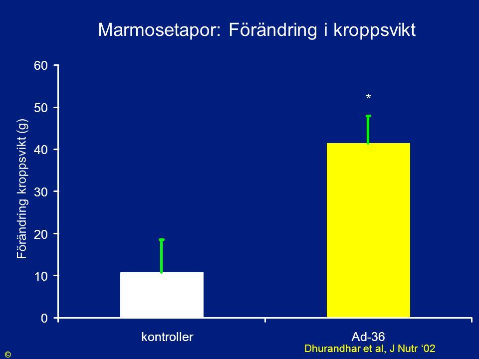 Marmosetapor: Förändring i kroppsvikt