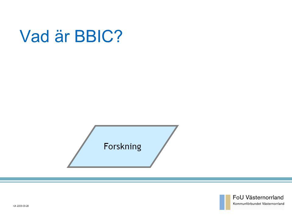 Vad är BBIC Forskning.