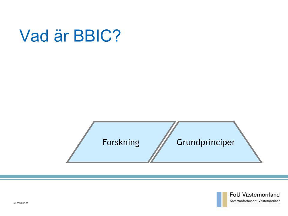 Vad är BBIC Forskning Grundprinciper