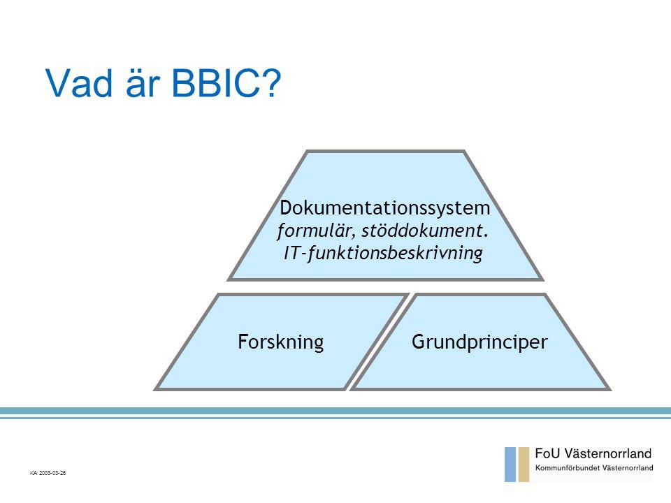 Vad är BBIC Dokumentationssystem Forskning Grundprinciper