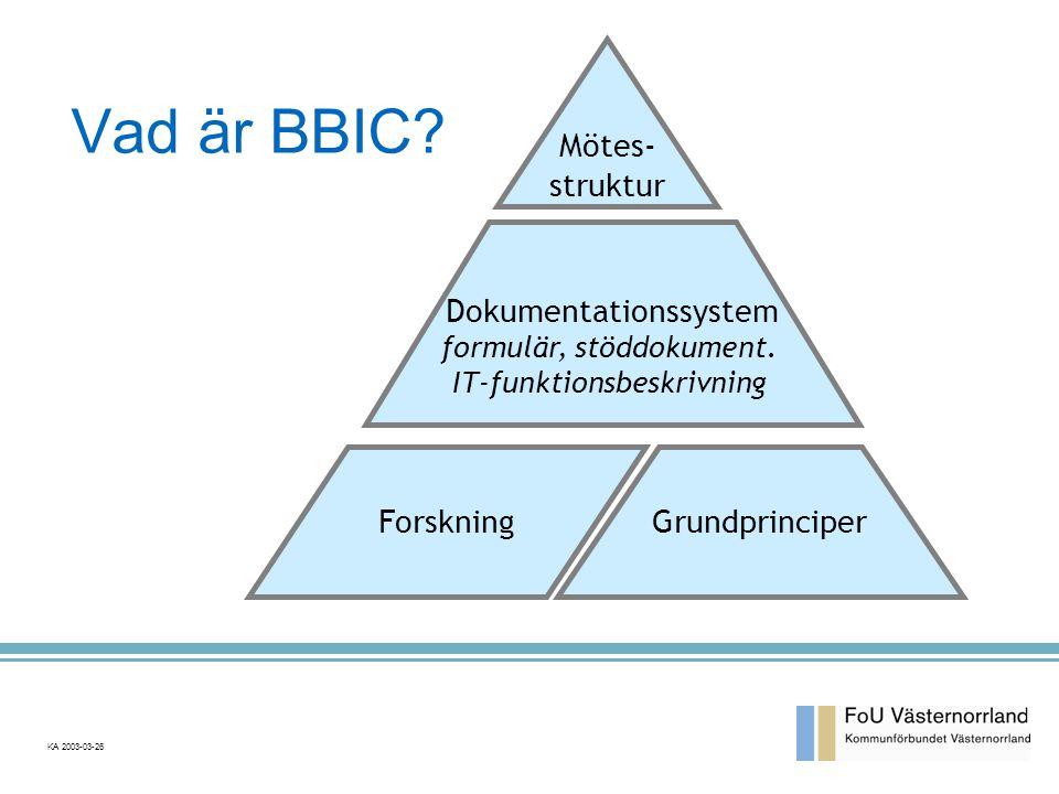 Vad är BBIC Mötes- struktur Dokumentationssystem Forskning