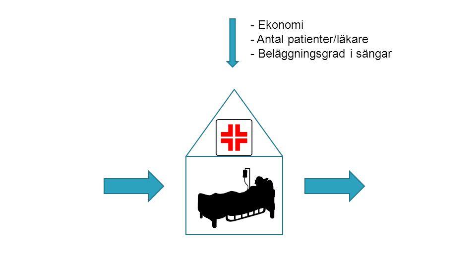Ekonomi Antal patienter/läkare Beläggningsgrad i sängar