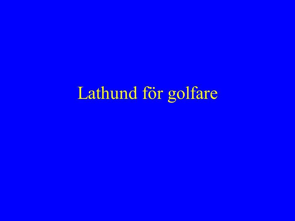 Lathund för golfare
