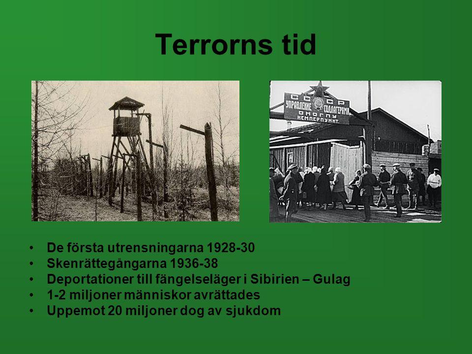 Terrorns tid De första utrensningarna 1928-30