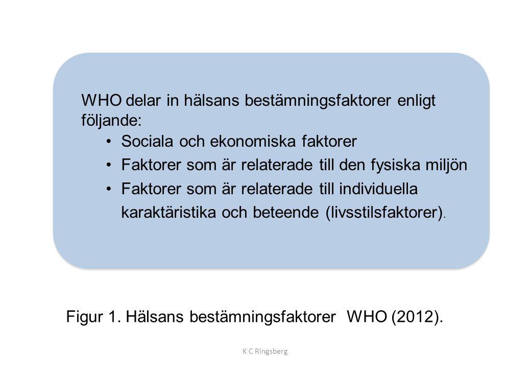 WHO delar in hälsans bestämningsfaktorer enligt följande: