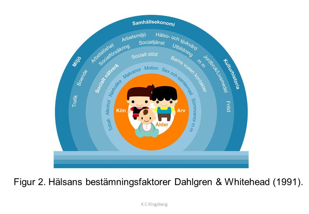 Figur 2. Hälsans bestämningsfaktorer Dahlgren & Whitehead (1991).
