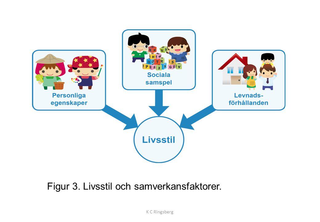 Figur 3. Livsstil och samverkansfaktorer.