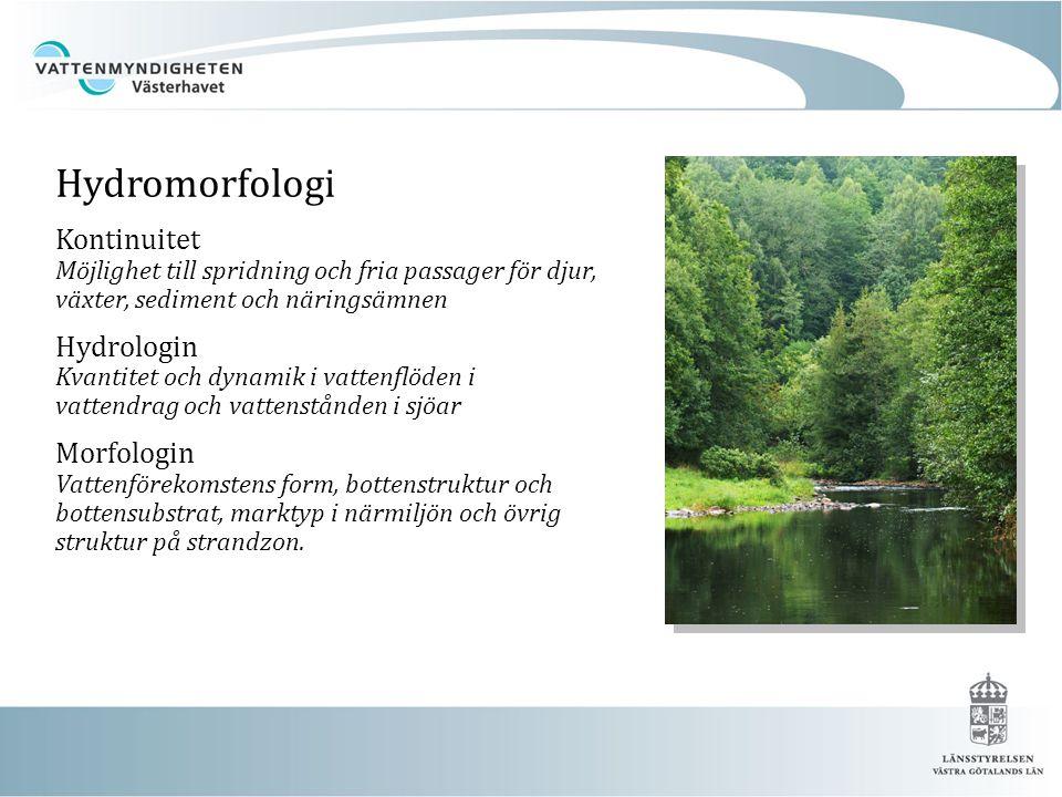 Hydromorfologi Kontinuitet Möjlighet till spridning och fria passager för djur, växter, sediment och näringsämnen.