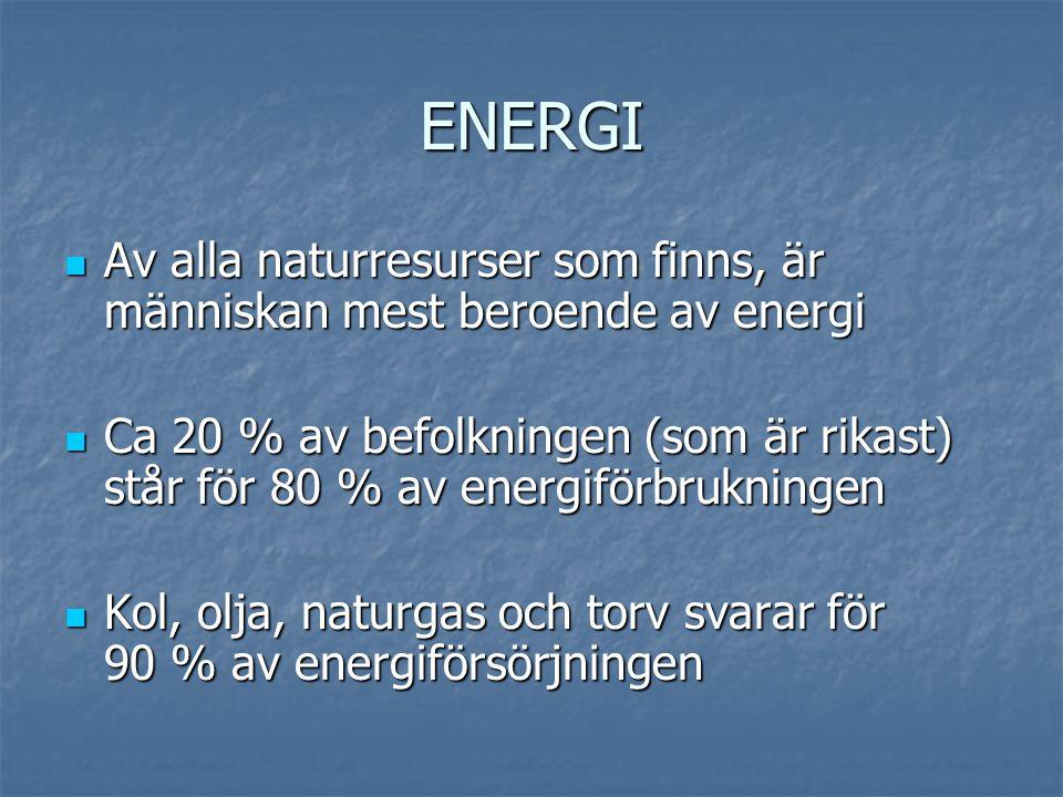 ENERGI Av alla naturresurser som finns, är människan mest beroende av energi.