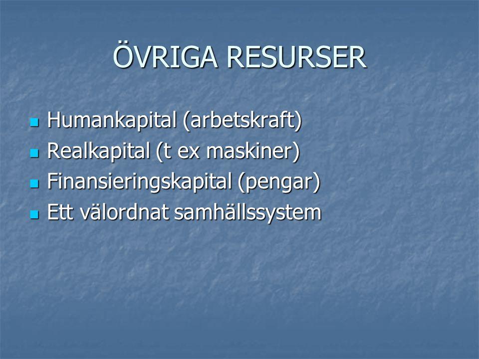 ÖVRIGA RESURSER Humankapital (arbetskraft) Realkapital (t ex maskiner)