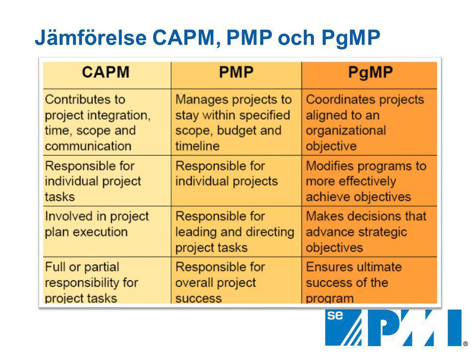 Jämförelse CAPM, PMP och PgMP