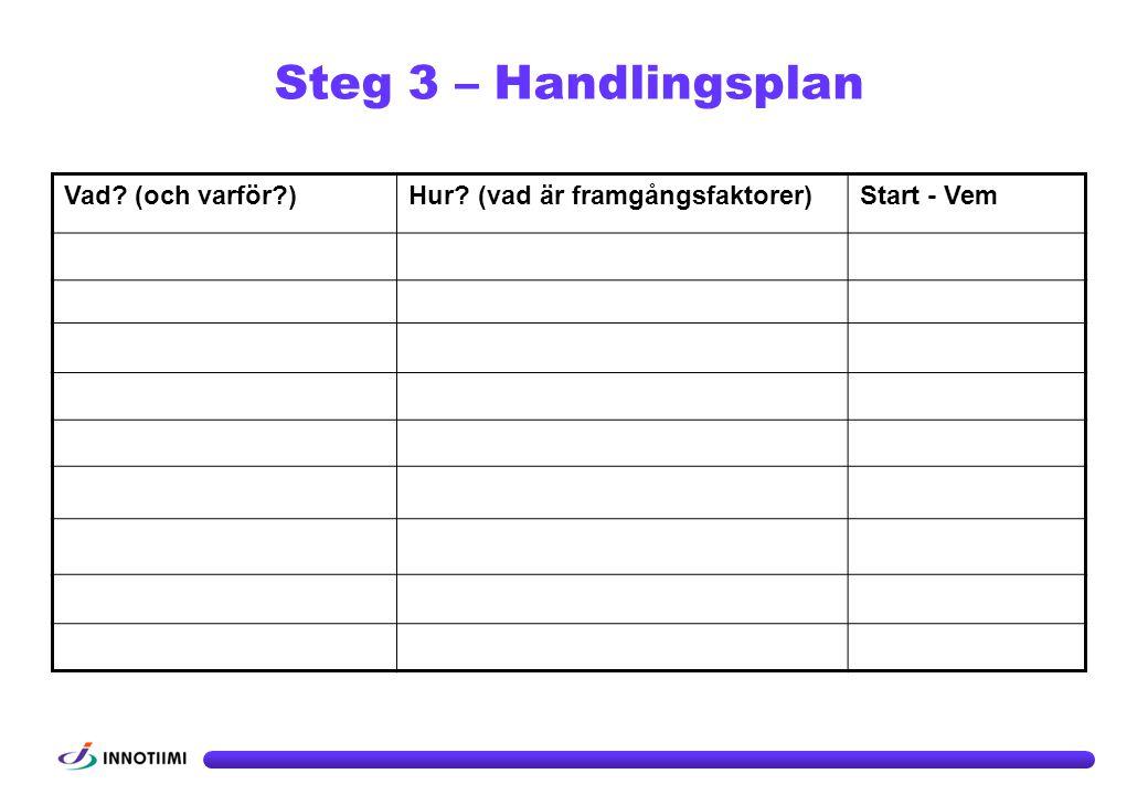 Steg 3 – Handlingsplan OBS! Exempel!