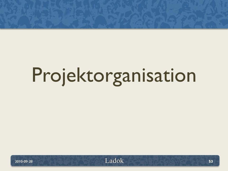Projektorganisation 2010-09-28
