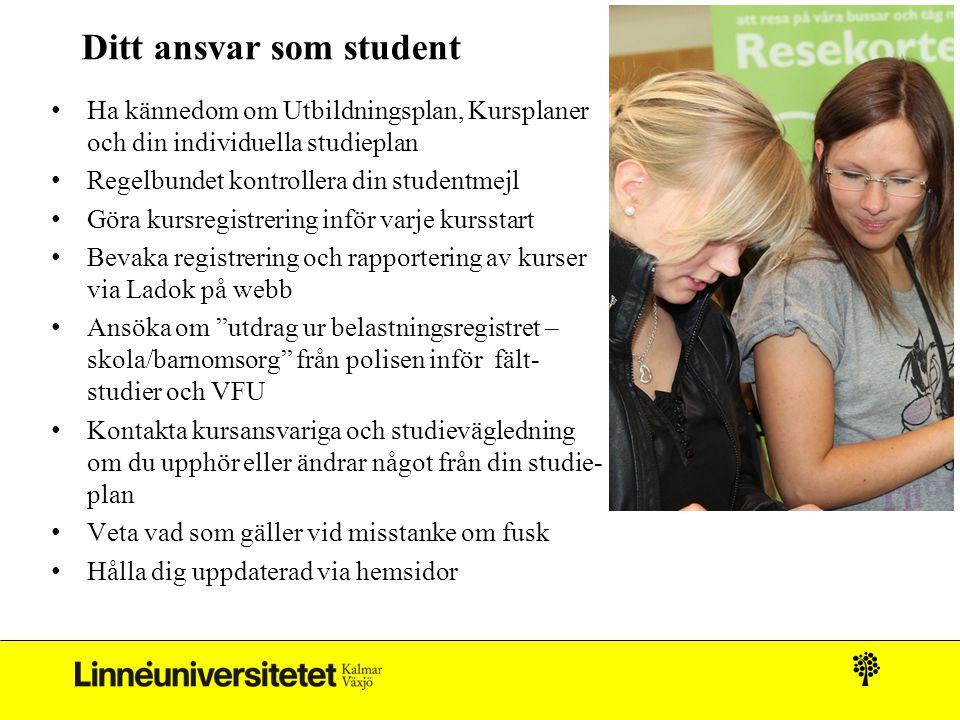 Ditt ansvar som student