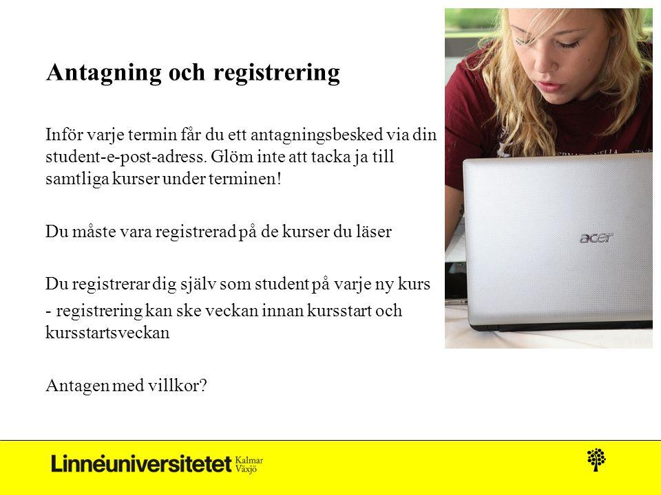 Antagning och registrering