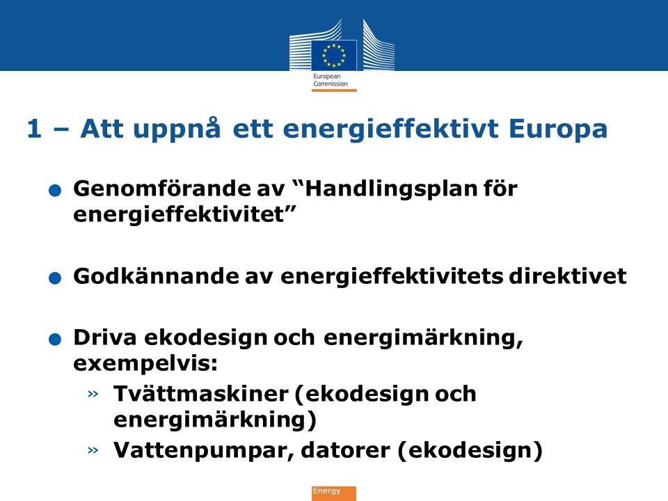1 – Att uppnå ett energieffektivt Europa