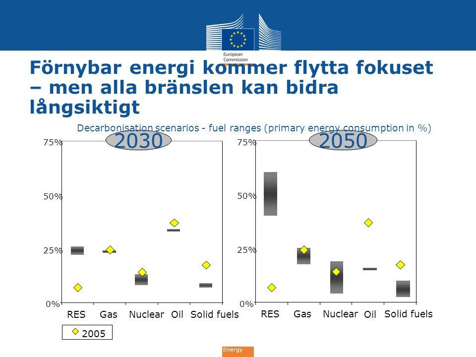 Förnybar energi kommer flytta fokuset – men alla bränslen kan bidra långsiktigt Decarbonisation scenarios - fuel ranges (primary energy consumption in %)